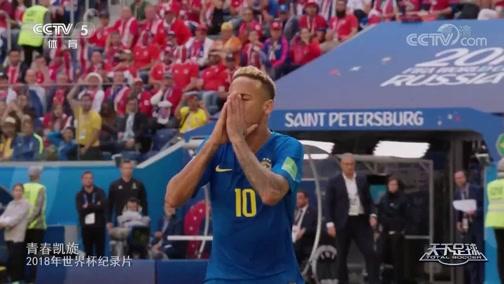 [天下足球]20190805 2018年世界杯纪录片——青春凯旋
