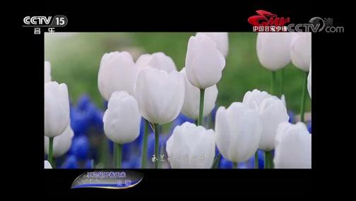 《中国音乐电视》 20190810