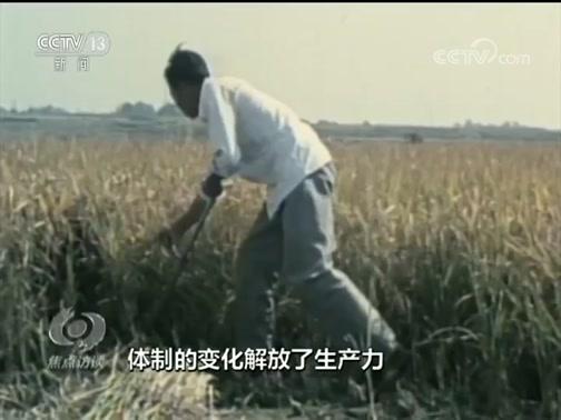 《焦点访谈》 20190813 新中国奇迹 粮食总产量2263亿斤↗13158亿斤
