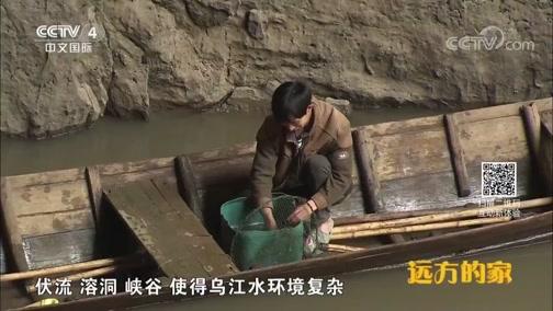 [远方的家]系列节目《大好河山》——秘境之踪 走近乌江暗河