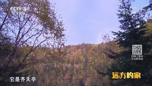 [远方的家]系列节目《大好河山》——秘境之踪 老君山的高山丹霞