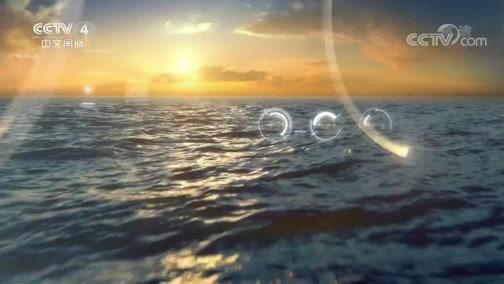 《海峡两岸》 20190817
