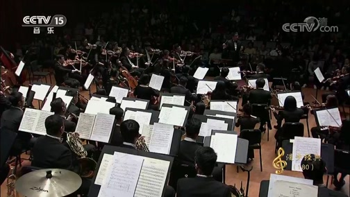 [CCTV音乐厅]《月亮颂》 大提琴:王健 指挥:杨洋 协奏:杭州爱乐乐团