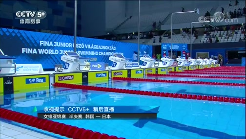 2019年世界青年游泳锦标赛 第三比赛日 20190824
