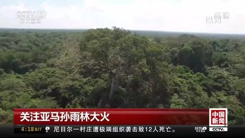 [中国新闻]关注亚马孙雨林大火 巴西军方派遣4.4万人协助灭火工作