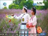顾靖尧与林湘君(9) 斗阵来看戏 2019.09.05 - 厦门卫视 00:48:30