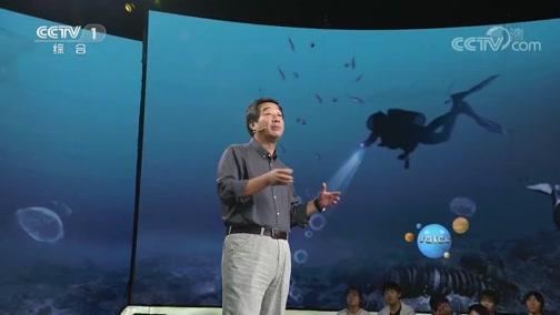 """[开讲啦]孙键:""""南海一号""""见证了中国水下考古从无到有 飞速发展的三十年"""