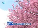 厦视直播室 2019.09.16 - 厦门电视台 00:47:02