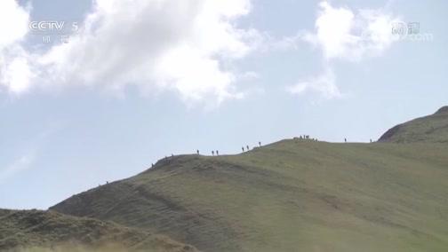 [综合]勃朗峰越野跑:奔跑 为了辉煌与梦想