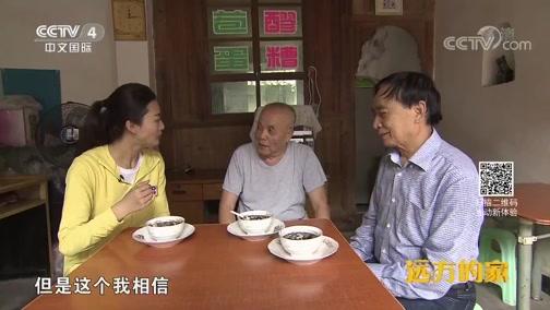《远方的家》 20191008 长江行(43) 两江交汇 山水涪陵