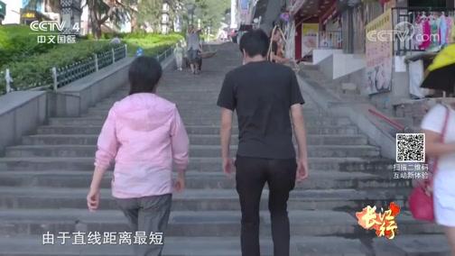 """[远方的家]长江行(48) 行走神女大道 感受""""站着的城市"""""""