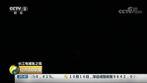 [经济信息联播]长江电捕鱼之殇 洞庭湖:深夜出洞 非法电捕鱼船密集作业
