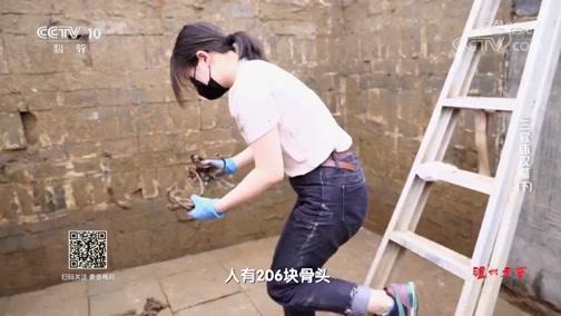 《探索·发现》 20191024 三官庙汉墓(下)