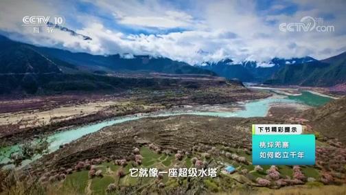 《地理·中国》 20200120 高原胜景·世界屋脊