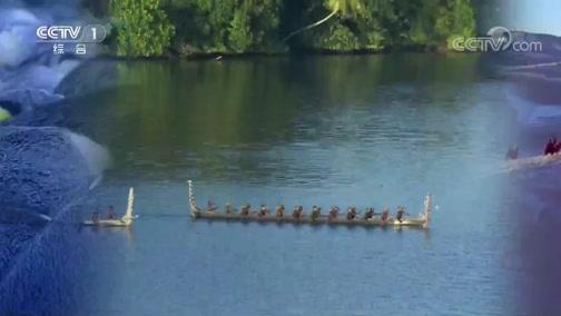 《人与自然》 20200213 博滕海——夏日的鸣唱
