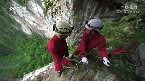 《地理·中国》 20200320 天坑奇境·隐蔽的山洞