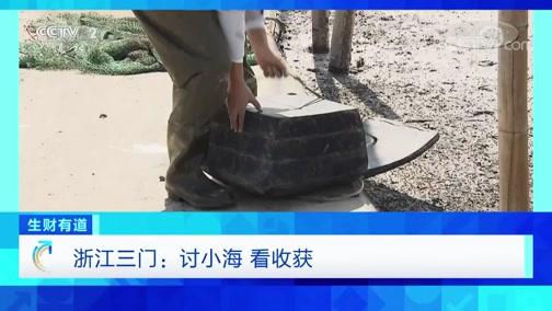 《生财有道》 20200323 浙江三门:讨小海 看收获