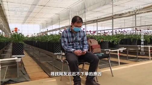 《创新进行时》 20200429 我在直播卖鲜花(二)