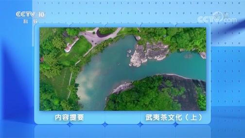 《跟着书本去旅行》 20200706 武夷茶韵——武夷茶文化(上)