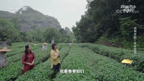 《跟着书本去旅行》 20200708 武夷茶韵——采茶技艺