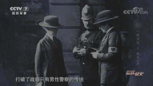 《世界战史》 20200810 一战日记 起义(上)