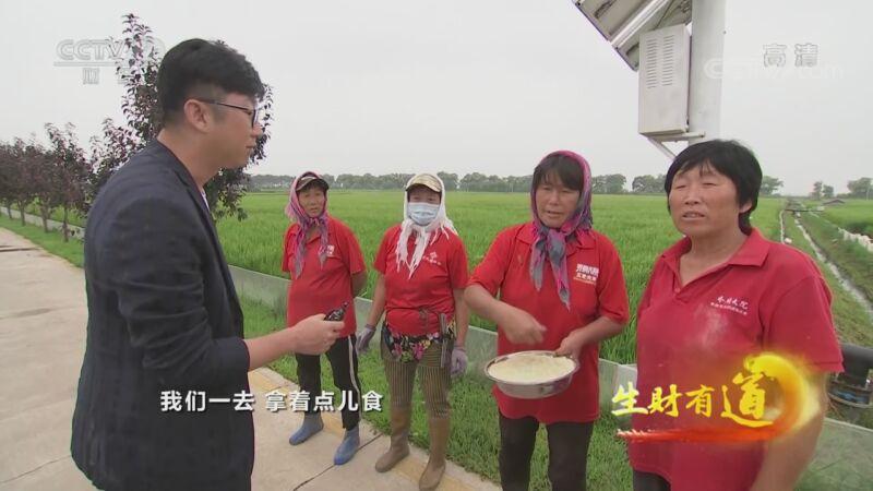 《生财有道》 20200831 咱们家乡有特产——黑龙江五常:稻花香里说丰年