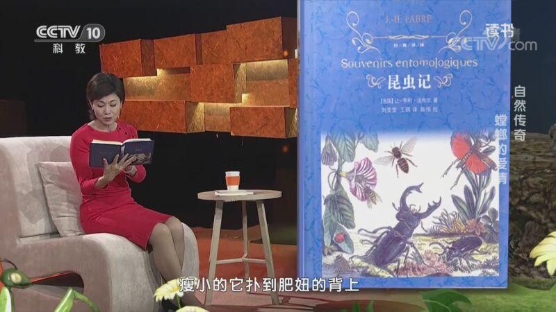 《读书》 20201124 让-亨利·法布尔 《昆虫记》 自然传奇 螳螂的爱情