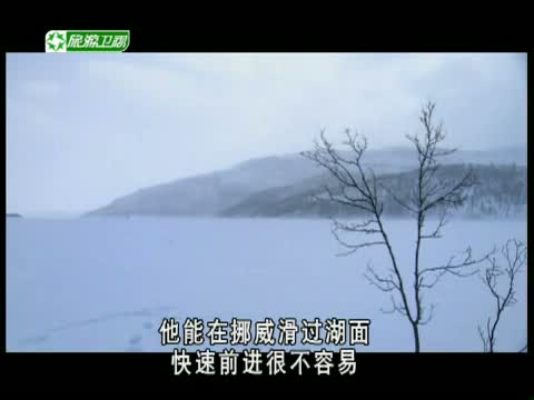 《荒野求生》 20121124