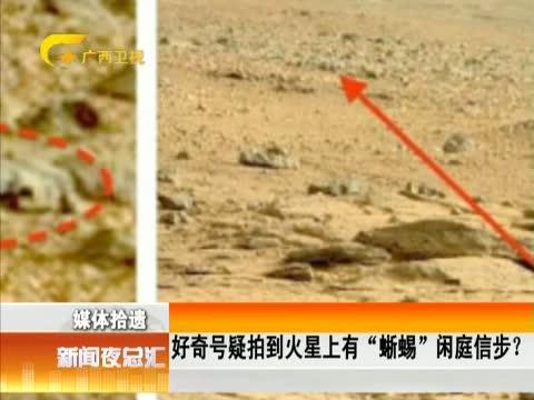 """好奇号疑拍到火星上有""""蜥蜴""""闲庭信步?"""