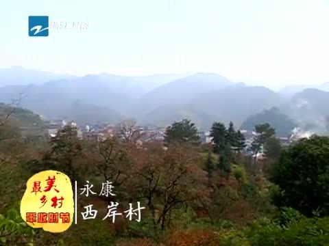 [浙江新闻联播]特别策划 到最美乡村 享受丰收时节 20131201