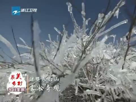 [浙江新闻联播]特别策划 到最美乡村 赏冬日美景 诸暨东白山雾凇奇观