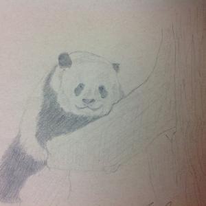 简单铅笔画