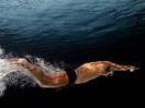 奥运会允许使用蝶泳腿技术