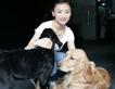 """[组图]蹦床公主最爱巨型犬 与""""金毛""""亲密接触"""