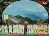 《我的中国心》 表演者:张明敏 (字幕版)
