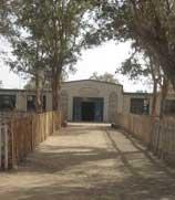 沙漠中的学校——达里雅布依乡学校