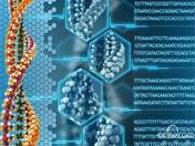 DNA元素百科全书