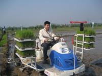 Accélérer les progrès agronomiques