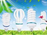 第61期 节能灯回收难题如何破解