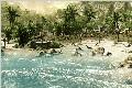 史上最佳画面游戏高清图 《孤岛危机》2