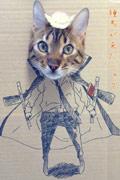教练!请教我如何将猫咪变成震惊世人的Coser