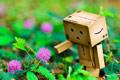 《四叶妹妹》纸箱人阿楞的幸福生活