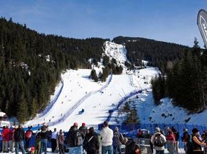 惠斯勒河畔滑雪场<br>比赛项目:高山滑雪