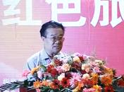 中国旅游协会名誉副会长王军宣布开幕