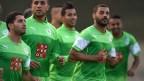[高清组图]阿尔及利亚低调备战巴西世界杯
