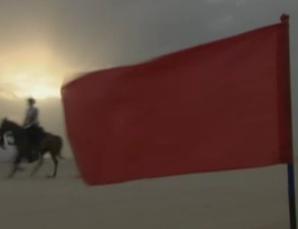 نافذة على الصين:الخيل العربي - ملك الخيول