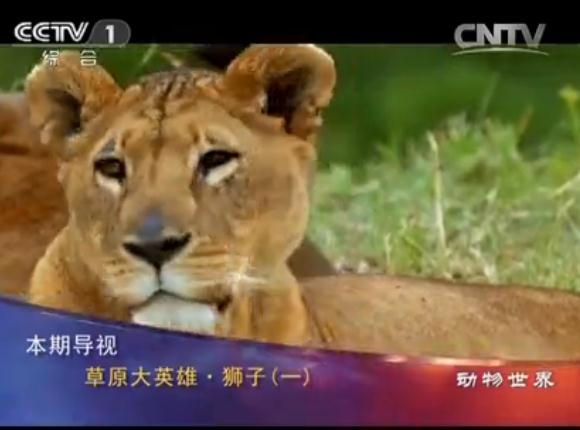 野生动物保护_ 中国林业