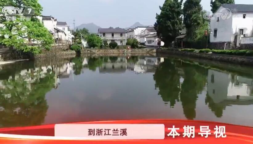 [科技苑]乡村治污记 养鱼鸭 零排放20190530