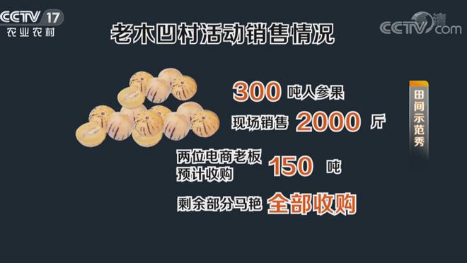 《田间示范秀》 20200406 拯救大山里的人参果