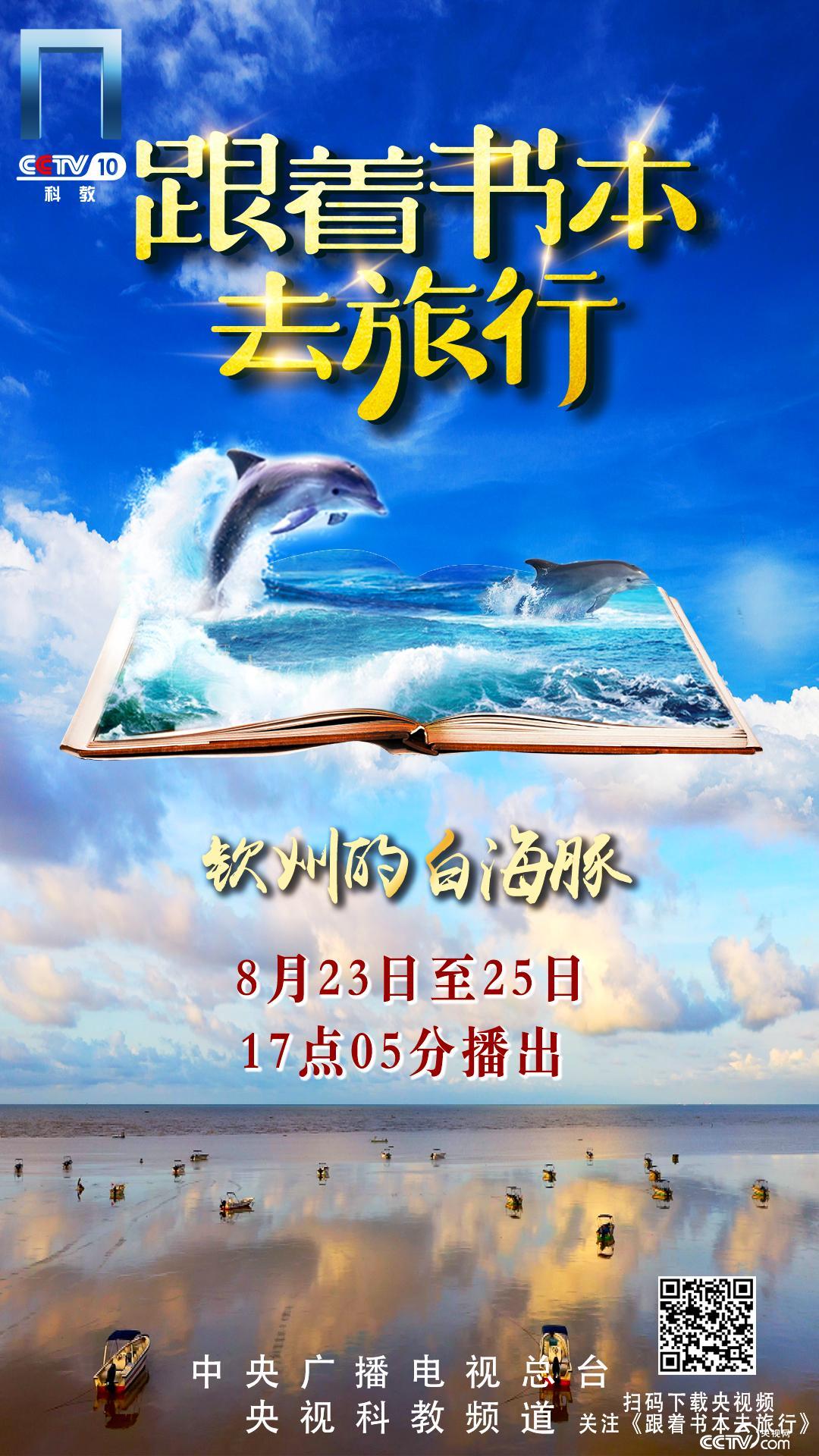 海报:《钦州的白海豚》